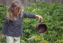 Ребенок поливает растения